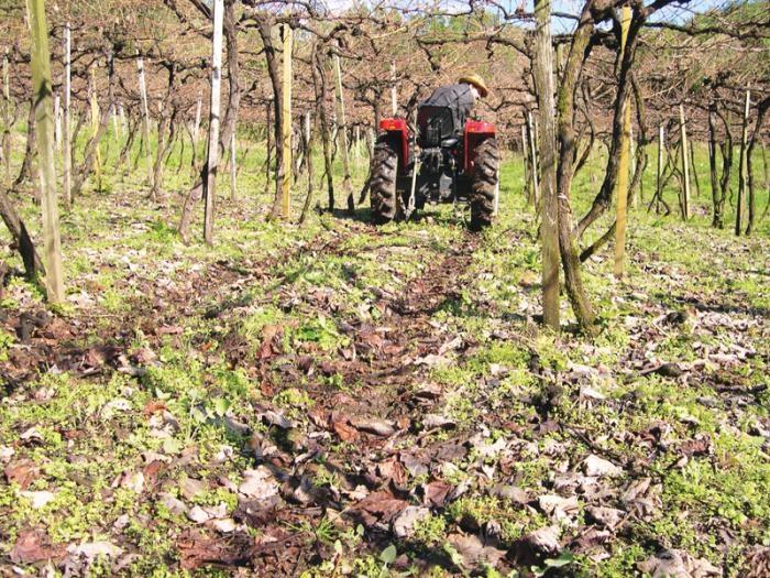 Tráfego excessivo de máquinas agrícolas é a causa principal da compactação do solo.