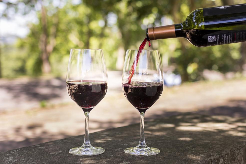 Seis vinícolas representarão a categoria na estreia do Brasil na feira Expovinos.