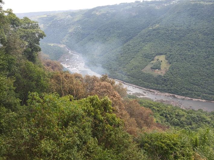 O Corpo de Bombeiros de Flores da Cunha e moradores paduenses controlam o incêndio que atinge o paredão de vegetação no Belvedere Sonda, em Nova Pádua.